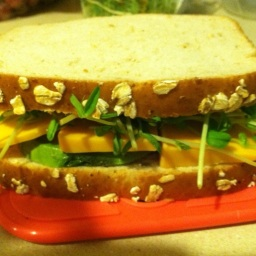My Perfect Packable Sandwich
